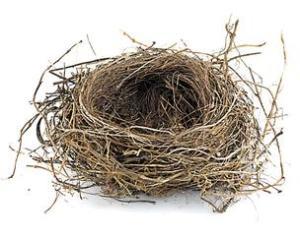 2.10-Empty-nest*304